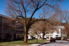 Apartments Buckhead Colonial Homes